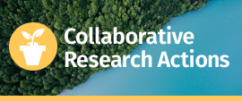 Collaborative Research Actions